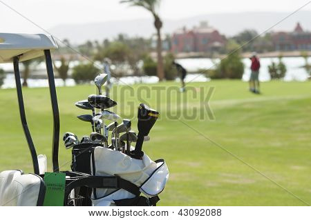Closeup Of Golf Clubs In A Bag