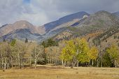 Colorado Fall Scenic