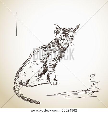 Hand drawn skinny little cat