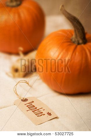 Pumpkin label with gourds and twine in the background