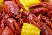 stock photo of creole  - Macro shot of Crayfish Boil. Shallow DOF.