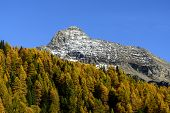 Mount Testa Grigia (ayas Valley, North Italy)
