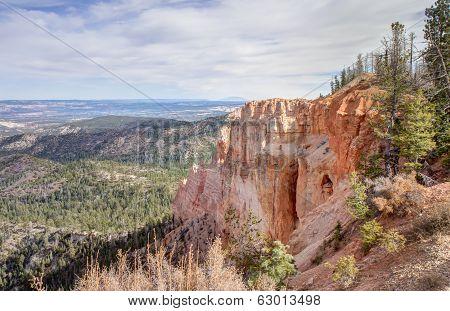 Black Birch Canyon
