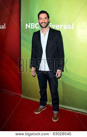 LAS VEGAS - APR 8:  Tom Ellis at the NBCUniversal Summer Press Day at Huntington Langham Hotel on April 8, 2014 in Pasadena, CA