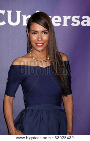LAS VEGAS - APR 8:  Daniella Alonso at the NBCUniversal Summer Press Day at Huntington Langham Hotel on April 8, 2014 in Pasadena, CA