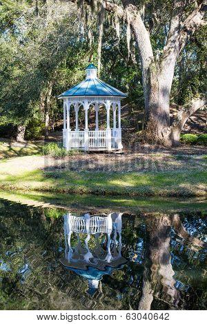 Reflection And White Gazebo Under Oak