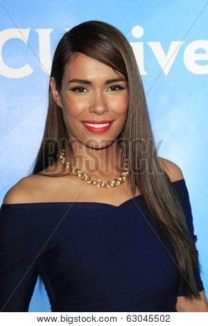 PASADENA - APR 8: Daniella Alonso at the NBC/Universal's 2014 Summer Press Day held at the Langham Hotel on April 8, 2014 in Pasadena, California