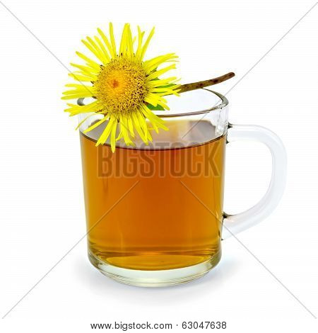 Herbal Tea With Elecampane In A Glass Mug