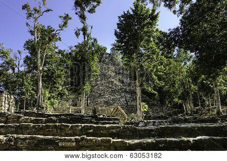 Mayan Ruins And Hut