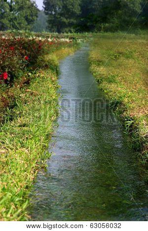Irrigation System In Flower Garden