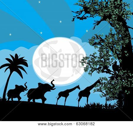 Safari In Africa Silhouette Of Wild Animals