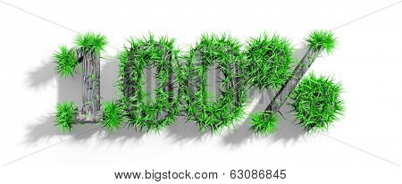 Wooden 100% text with green grass growth isolated