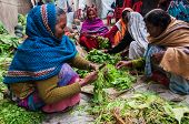 Rural Indian Women Cutting Vegetables