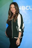 PASADENA - APR 8: Bianca Kajlich at the NBC/Universal's 2014 Summer Press Day held at the Langham Ho