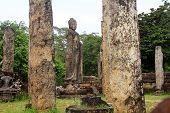 picture of polonnaruwa  - Ruins of atadage and Buddha statue in Polonnaruwa Sri Lanka - JPG