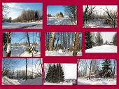 Beautiful winter collage.