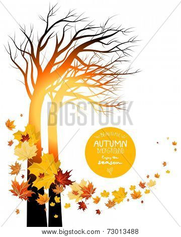 Autumn leaves and silhouette of a tree. Sunrise or sunset. Copy space.