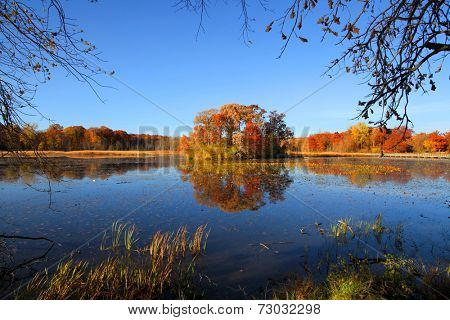 Small island in the middle of Kent lake in autumn time