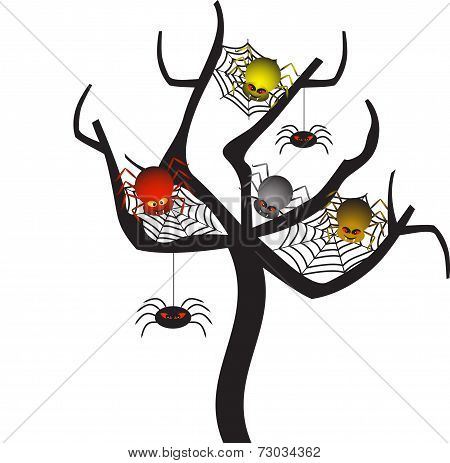 Spider Web Tree, Spider Vectors