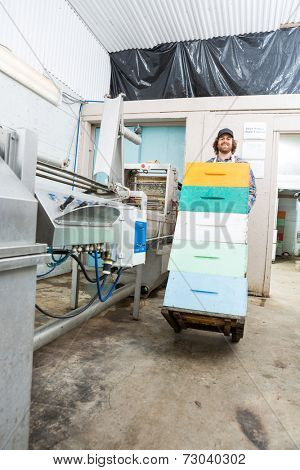 Portrait of young male beekeeper with stacked honeycomb crates in trolley at factory