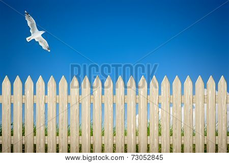 An image of a private fence background