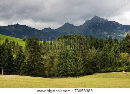 Alpine landscape in Austria, Europe