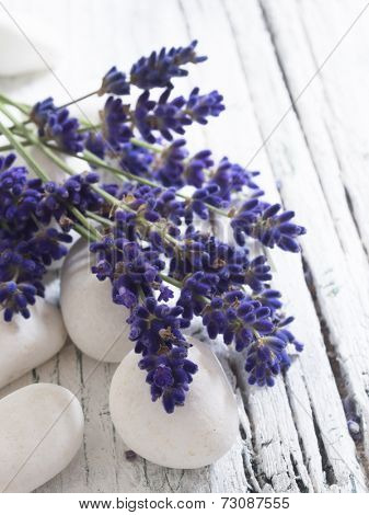 lavender on the white stones, spa