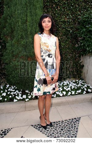 LOS ANGELES - SEP 28:  Tamara Taylor at the The Rape Foundation's Annual Brunch at Private Location on September 28, 2014 in Beverly Hills, CA