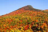 stock photo of razorback  - Seneca rocks peak with colorful autumn time - JPG