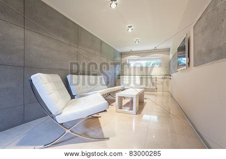 Modern Drawing Room