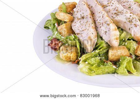 Fresh Chicken Caesar Salad