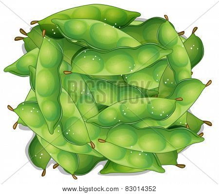 Illustration of a bunch of edamame