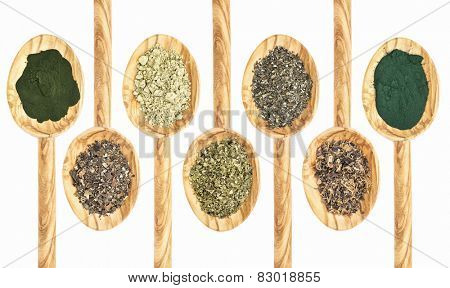 a collection of seaweed and algae dietary supplements on wooden spoons - chlorella, bladderwrack, kelp, sea lettuce, walame, Irish moss,  spirulina, (from left to right)
