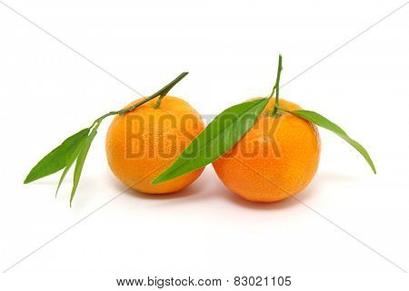 mandarin isolated on white background