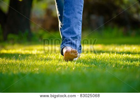 Woman Barefoot Legs on the Green Grass in the Garden