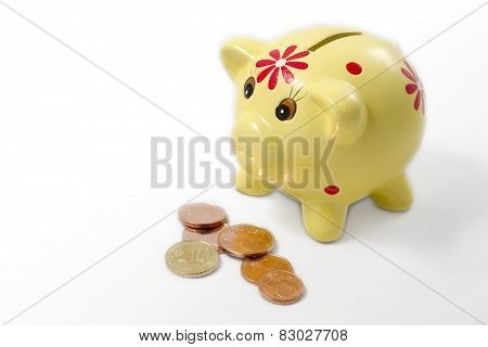 A Yellow Piggy Bank