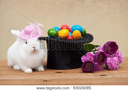 Cute easter bunny with spring flowers and colorful eggs in magician hat-shallow depth of field
