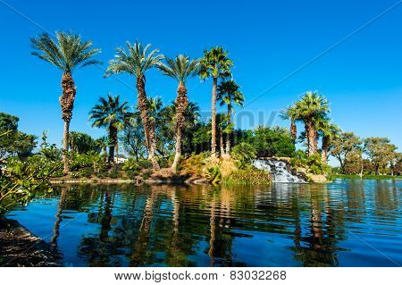 Palm Trees On Side Of Lake With Reflection