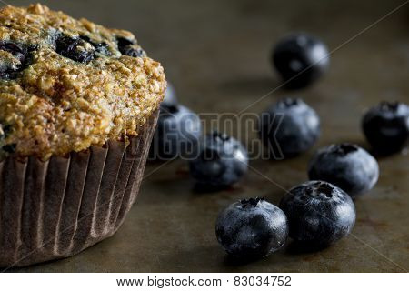 Blueberry Bran Muffin with Blueberries