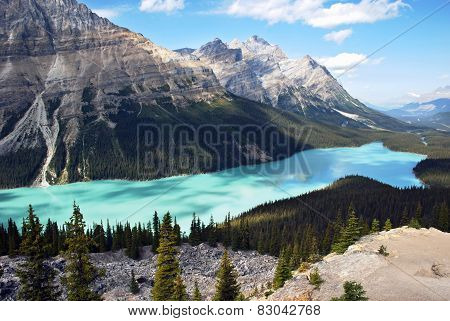 Peyto Lake Banff