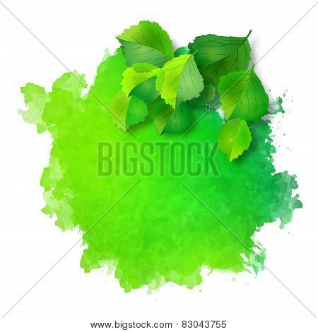 Vector Watercolor Spot With Green Leaves