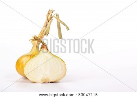 half onion on the background of a whole ripe onion, isolated on white background