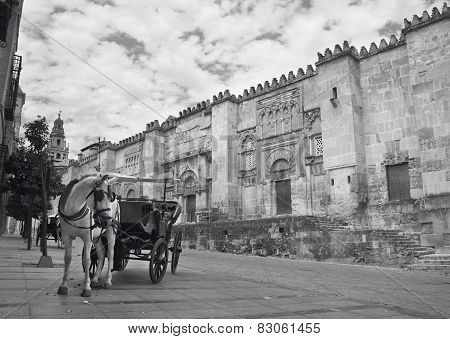 Spanish Cathedral. Mezquita Outdoor Facade With Horse Drawn Carriage. Cordoba