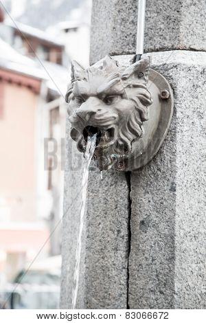 Animal head water fountain