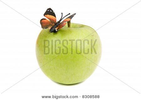 Butterfly On Apple