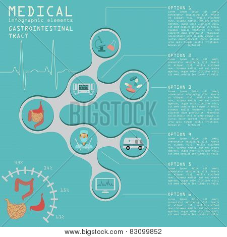 Medical and healthcare infographic, gastrointestinal tract infographics