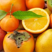 pic of satsuma  - collection of fresh fruits background - JPG