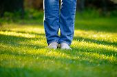 stock photo of barefoot  - Woman Barefoot Legs on the Green Grass in the Garden - JPG