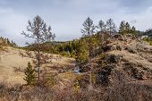 picture of siberia  - Early spring in the foothills of the Kuznetsk Alatau - JPG