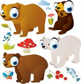 image of polar bears  - vector cartoon bears set - JPG